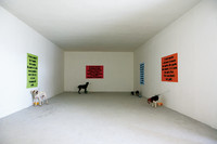 Performance - Dogs to difese the concepts